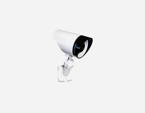 Monitronics outdoor camera